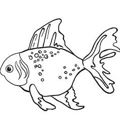 fish1 vector image vector image
