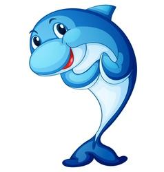shark fish vector image vector image