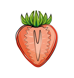 Strawberry fresh and healthy fruit vector