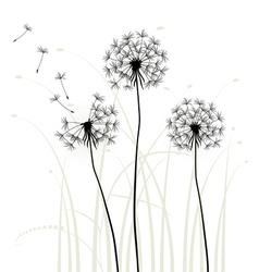 Meadow weeds dandelions silhouettes vector image