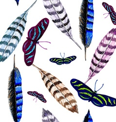 Feather and butterfly vector image