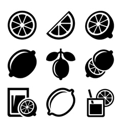 Lemon and lime icons set vector
