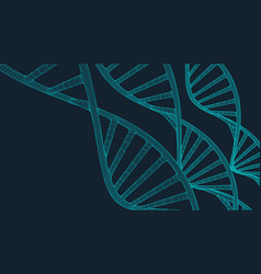 grey dna with polygon line on blue background vector image vector image