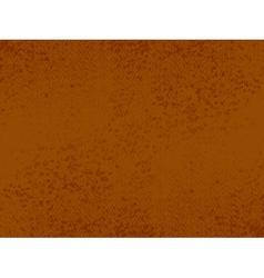 grunge brown texture vector image