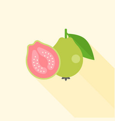 whole and half guava in cross section vector image vector image