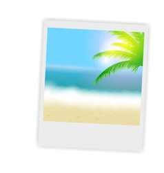 Beautiful summer background with instant photos vector image