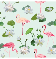 Flamingo bird and waterlily flowers background vector