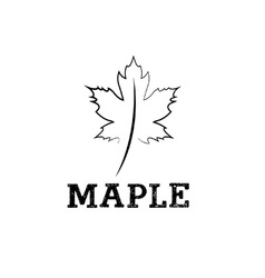 maple leaf design template vector image