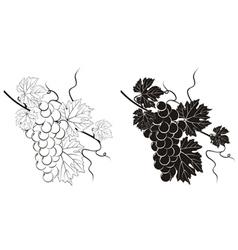 vine silhouette vector image vector image