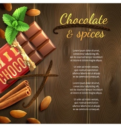 Chocolate and spices background vector