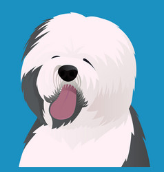 old english sheepdog close up vector image vector image