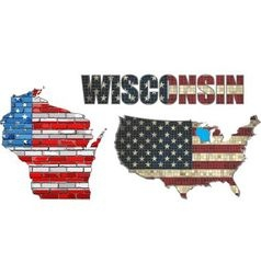 Usa state of wisconsin on a brick wall vector
