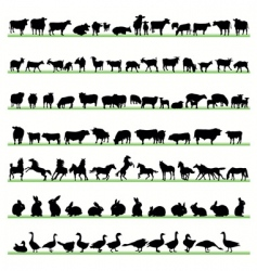 farm animals2 vector image