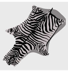 Skin rug zebra cartoon style vector
