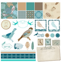Vintage Birds and Feathers vector image