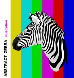 Zebra portrait on abstract bright strips vector