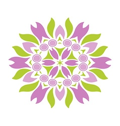 Colored floral ornament isolated vector