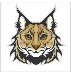 Head of lynx isolated on white - mascot logo vector