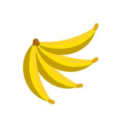 Bananas fruit healthy meal vector