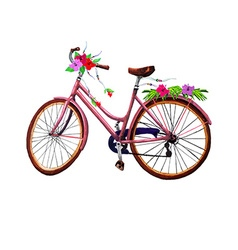 Bike and flowers vector
