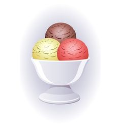 icecream in a bowl vector image