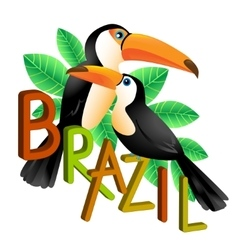 Two colorful toucans sitting on a branch brazil vector