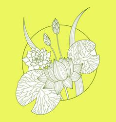 lotus flower fashion vector image