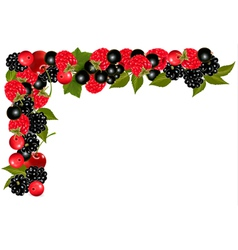 Frame made of fresh juicy berries vector