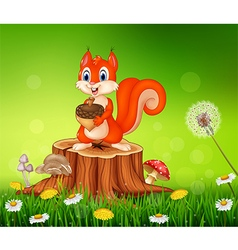 Cartoon squirrel holding pine cone on tree stump vector image vector image