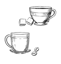 Cup of coffee with beans and tea with sugar vector image