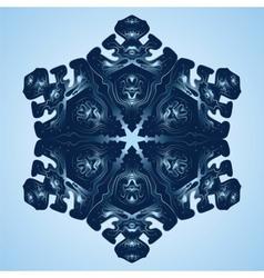 Beautiful Blue Snowflake vector image