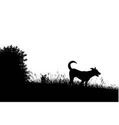 Meadow dog silhouette vector