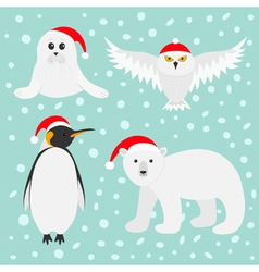 Arctic polar animal set White bear owl king vector image