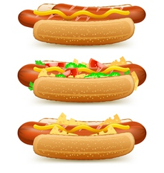 Hotdog cheese tomato salad vector