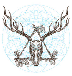sketch of deer skull in triangular vintage frame vector image