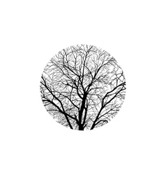 Winter tree in a circle vector