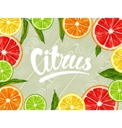 Background with citrus fruits slices Mix of lemon vector image