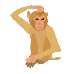 Brooding monkey icon cartoon style vector