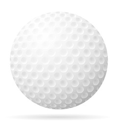golf 21 vector image vector image