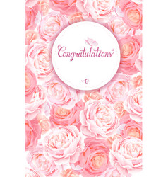 greeting card with the pink roses background vector image