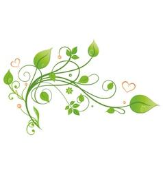 Floral elements ornament vector image