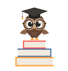 cute owl with graduation cap and books vector image