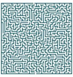 Maze pattern vector image