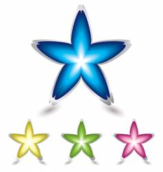 star flower icon vector image
