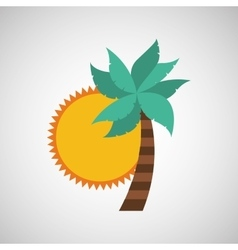 Palm and sun icon vector