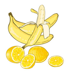 Bananas and lemons vector