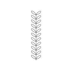 line rustic branch with leaves design vector image vector image