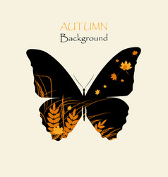 silhouette of butterfly with grass vector image