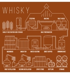 Whiskey production process infographic vector