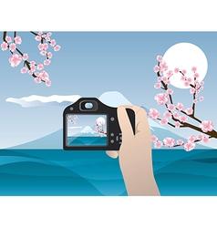 travel photo sakura tree and fuziyama vector image vector image